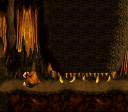 Donkey Kong Country - is that a brown chicken? - User Screenshot